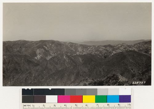 View north from the ridge between Pacoima and the Little Tujunga showing the Pacoima. Entire area burned over in 1919. Iron Mt. Is to be seen in the background. The difference in soil color to the right is noticeable. The area showing up light supports a lighter cover than the darker appearing districts