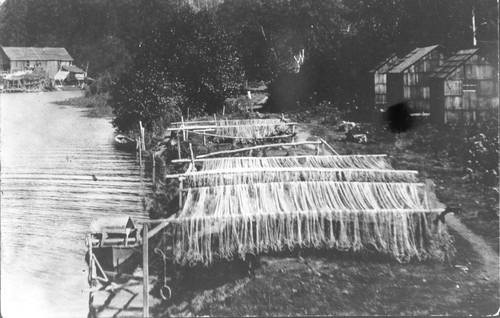 Requa: Fish nets drying along a Klamath River channel