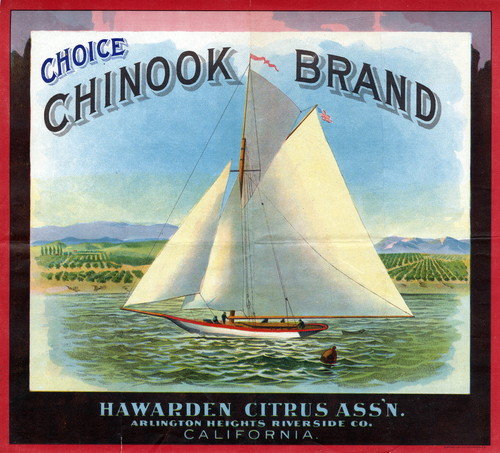 "Crate label, ""Choice Chinook Brand."" Hawarden Citrus Ass'n. Arlington Heights Riverside Co. California"