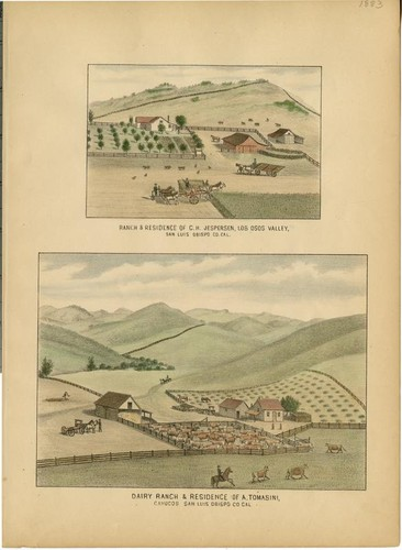 Jespersen, C. H., Ranch and Residence, Los Osos Valley, San Luis Obispo County;Tomasini, A., Dairy Ranch and Residence, Cayucos[On Same Plate]