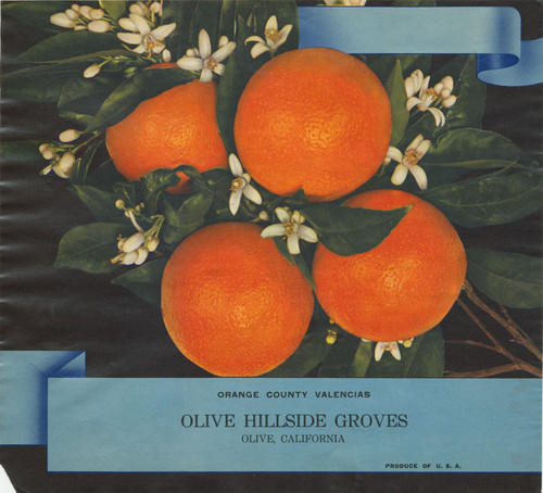 Crate label, Orange County Valencias, Olive Hillside Groves, Olive, California