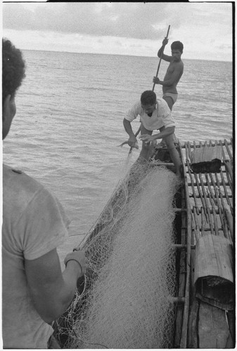 Fishing: man removes fish from net on board a canoe