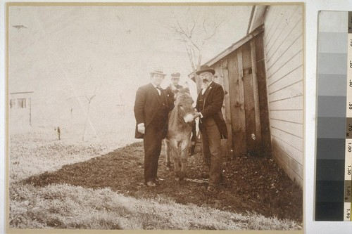 [Unidentified men and boy with burro. Mounted.]