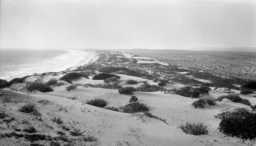 Coast dune near Socorro, active and mantled, with white sand