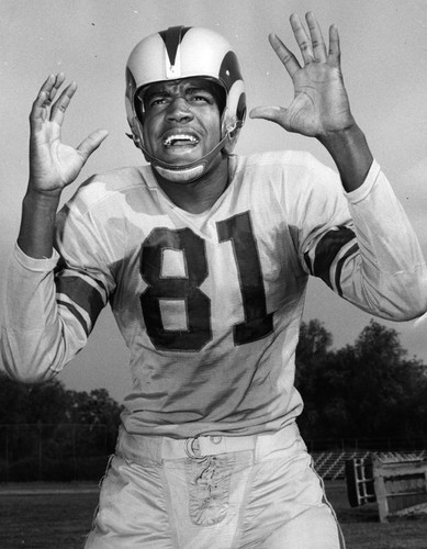 c2f42d1684c List of Synonyms and Antonyms of the Word: night train lane