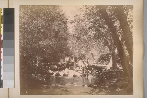 Country bridge--San Antonio Creek. Sheep Ranch (Calaveras Co.). [No.] 3. 1890