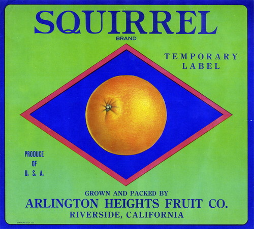 "Crate label, ""Squirrel Brand."" Temporary Label. Grown and packed by Arlington Heights Fruit Co. Riverside, Calif"