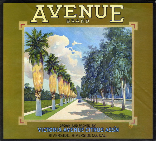 "Crate label, ""Avenue Brand."" Grown and packed by Victoria Avenue Citrus Assn. Riverside, Calif"