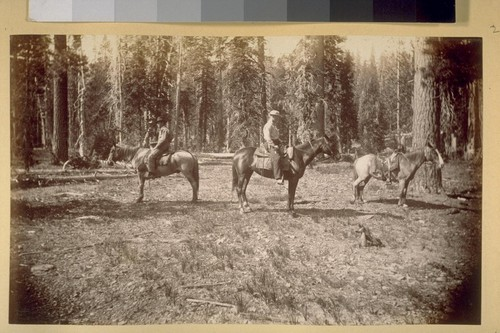 At Buck horn Camp. 1881