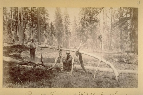Roasting Venison at Middle Fork Camp. 1883
