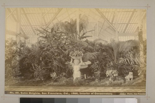 No. 58 - Sutro Heights, San Francisco, Cal., 1886, Interior of Conservatory