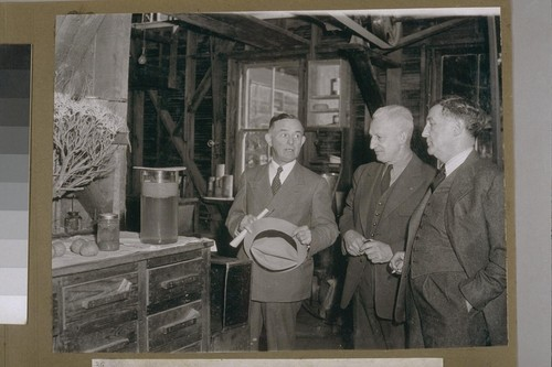 Dr. D. Spence, well known rubber chemist and specialist, Major Evan W. Kelley of the United States Forest Service in charge of the Government project and Senator Sheridan Downey
