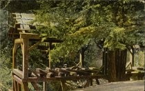 The Old Mill, Mill Valley, postcard 4729