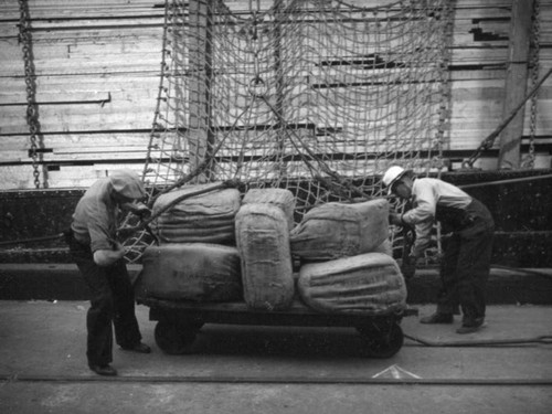 L. A. Harbor, dockworkers load the Coya