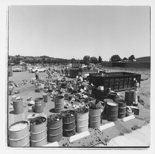 Santa Rosa Recycling Center >> Calisphere Recycling Center Santa Rosa California 1971