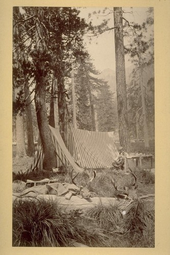 Our North Fork Camp. 1883