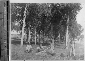 Boys gathering grasses, Pang Chuang, Shandong, China, ca.1890