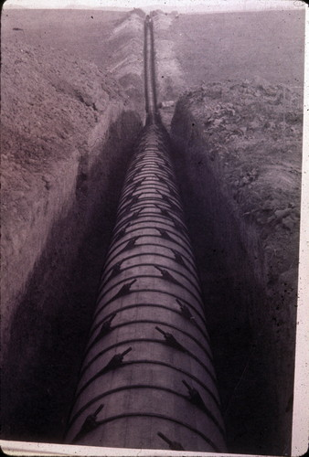 Old redwood pipeline from E. Whittier to La Habra