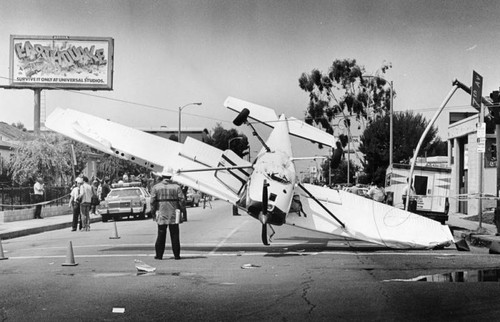 Crash in Venice Beach