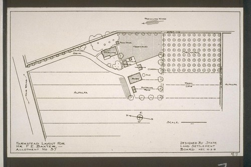 Farmstead layout for Mr. F. E. Baxter, Allotment No. 37 - Designed by State Land Settlement Board, 10-2-18