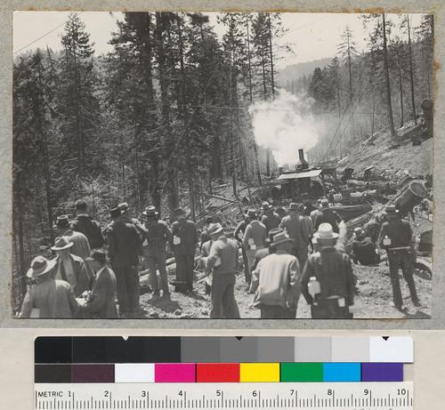pacific lumber company history