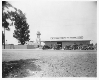 Fig - Stockton: California Kadota Fig Products Inc., [Traction Line and Linden Rd.]
