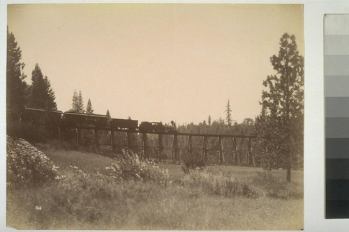 144. [Train on trestle. Nevada County Narrow Guage Railroad. Unidentified location.]
