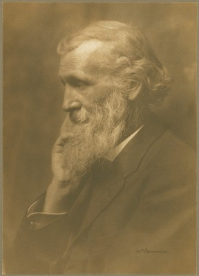 John Muir Portrait, San Francisco