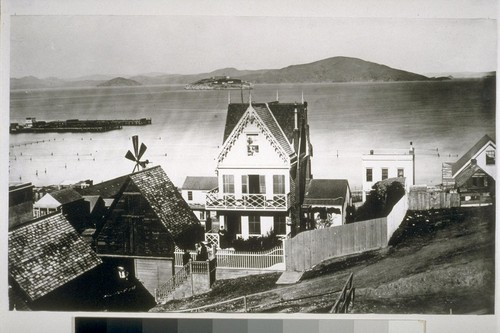 Northern slope of Telegraph Hill. Meigg's Wharf L-section at left center. Narrow lots