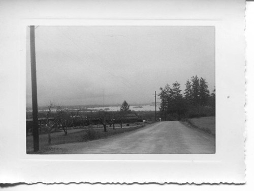 1951 flood in the Laguna de Santa Rosa area of Sebastopol from Cherry Ridge Road