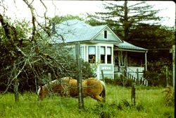 Historic Restoration Award 1983--the Julie Price Home, 4051 Harrison Grade Road, Sebastopol/Occidental, California
