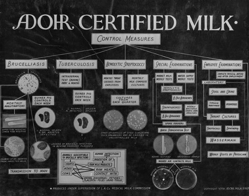 Adohr Farms' chart of control measures taken to protect milk from contamination, 1936