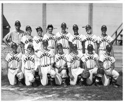 Group photo of Pony League baseball team, The Yankees, 1959