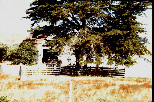 Unidentified barn in western Sonoma County, 1982