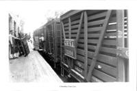 Cannery workers unloading from train cars