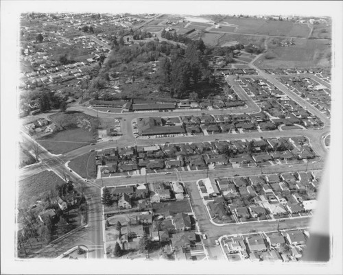 Aerial view of the Town and Country Shopping Center, Santa Rosa, California, 1960
