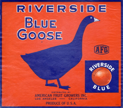 "Crate label, ""Blue Goose."" Riverside Blue. Distributed by American Fruit Growers Inc. Los Angeles, Calif"