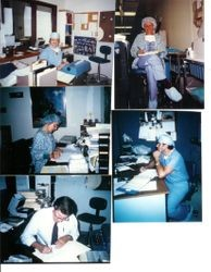 Five photos of different Palm Drive hospital staff members performing paperwork at the Hospital in 1985