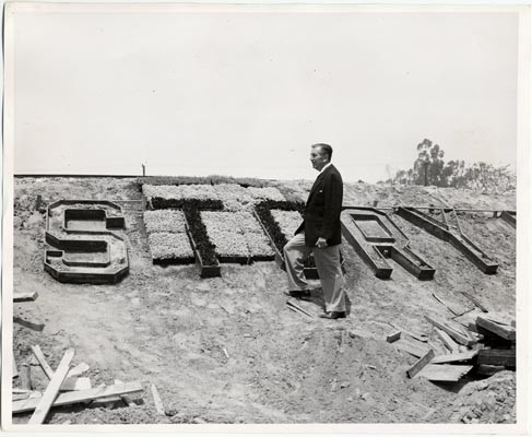 Calisphere Walt Disney Examining The Construction Of Story