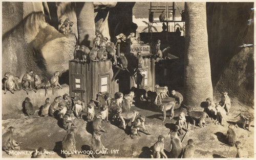 Monkey Island, Hollywood, Calif., 137
