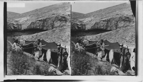 A Bedouin Tent in Wilderness of Judea. Palestine & Calisphere: A Bedouin Tent in Wilderness of Judea. Palestine