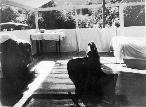 Tent Cabin at Hospital Rock Highway 198 Construction Sequoia National Park Calif & Calisphere: Tent Cabin at Hospital Rock Highway 198 Construction ...