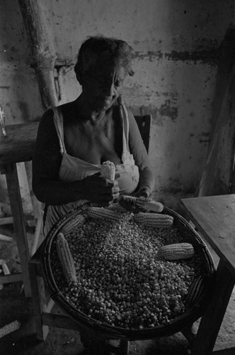 Woman removing corn from cobs, San Basilio de Palenque, 1976
