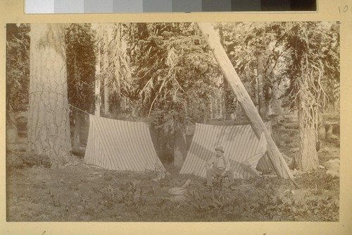 Camp in the head of the Middle Fork. 1883