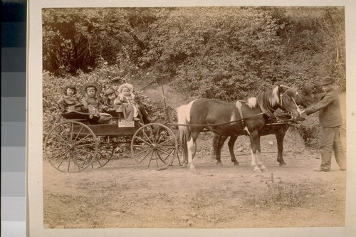 "The Pony Rig [Children in pony-drawn wagon, ""Blue Lake Stage Line""]"
