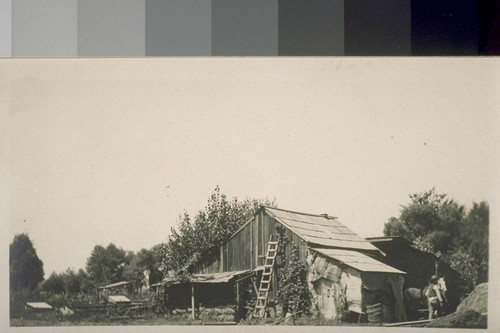 Jap farm house, near Sacramento. [Housing for Japanese farm laborers.]