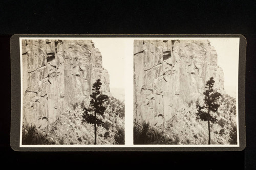 Stereoscope card (Stereographic)--Cliffs along Bright Angel Trail, Grand Canyon