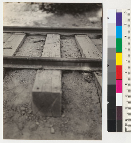 Chemonited cross ties in logging railroad track of Diamond Match Company, 4 1/2 miles from Stirling City, California. Tie #74 is the fifth tie from #73 shown in #6987. Tie #74 in center showing character of checking. 8-7-41/ E/F/