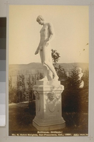 No. 8 - Antinous. (Antique.) - Sutro Heights, San Francisco, Cal., 1886