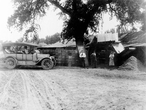 Almond huller and fruit cutting shed on the property of the Bidwell Orchards, Inc